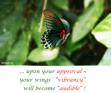 upon-your-approval--your-wings-vibrancy-will-become-audible