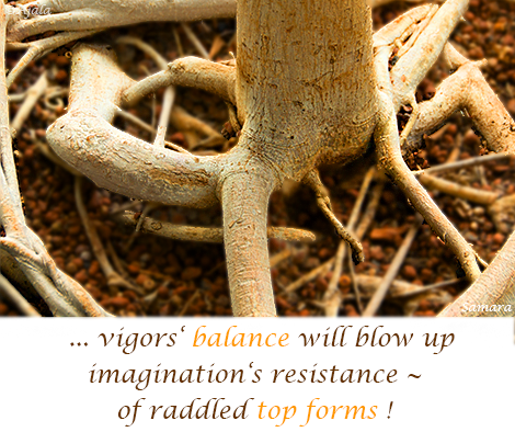 vigors-balance-will-blow-up-imaginations-resistance-of-raddled-top-forms
