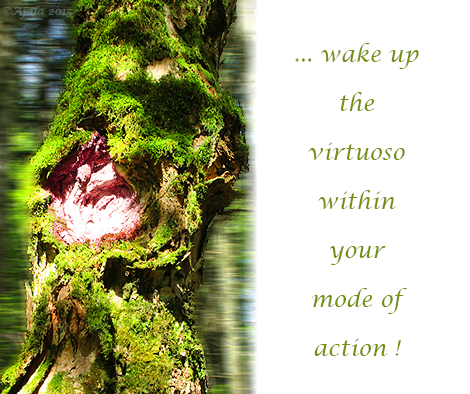 wake-up-the-virtuoso-within-your-mode-of-action