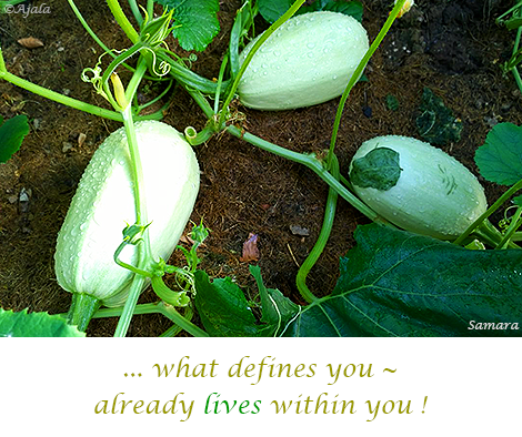 what-defines-you--already-lives-within-you