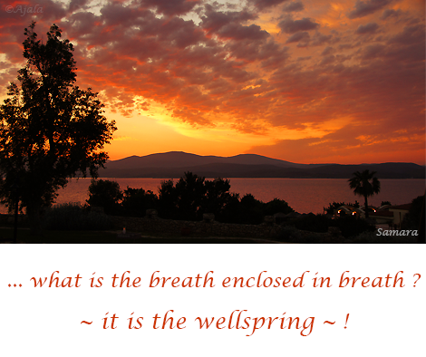 what-is-the-breath-enclosed-in-breath--it-is-the-wellspring--
