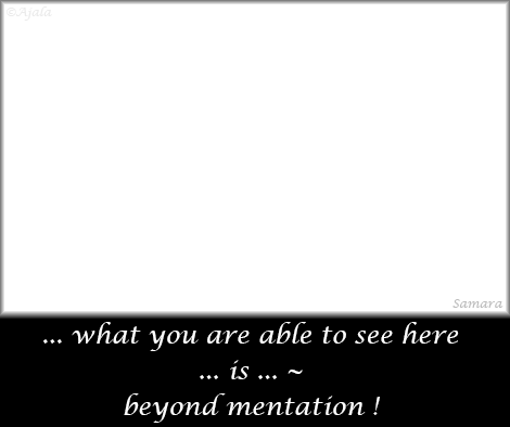 what-you-are-able-to-see-here-is-beyond-mentation
