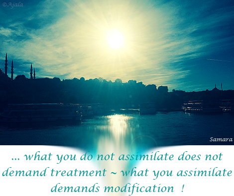 what-you-do-not-assimilate-does-not-demand-treatment--what-you-assimilate-demands-modification