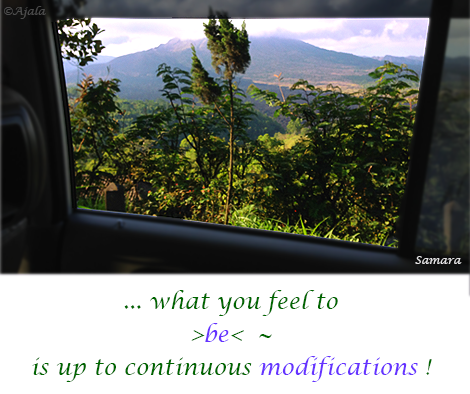 what-you-feel-to-be--is-up-to-continuous-modifications