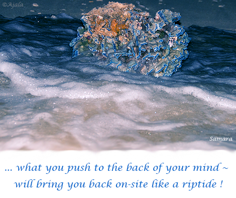 what-you-push-to-the-back-of-your-mind--will-bring-you-back-on-site-like-a-riptide