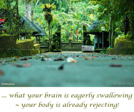 what-your-brain-is-eagerly-swalloing--your-body-is-already-rejecting