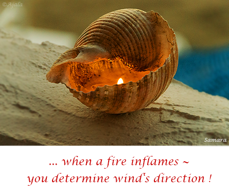 when-a-fire-inflames---you-determine-wind-s-direction