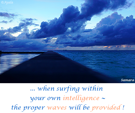 when-surfing-within-your-own-intelligence---the-proper-waves-will-be-provided