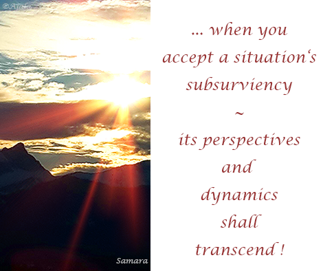when-you-accept-a-situation-s-subsurviency--its-perspectives-and-dynamics-shall-transcend