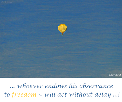whever-endows-his-observance-to-freedom--will-act-without-delay