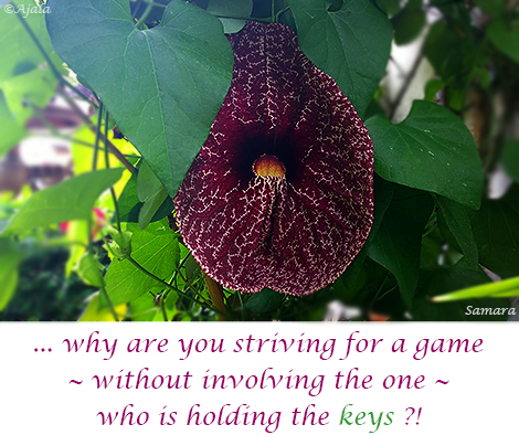 why-are-you-striving-for-a-game--without-involving-the-one--who-is-holding-the-keys