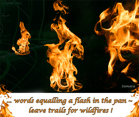 words-equalling-a-flash-in-the-pan--leave-trails-for-wildfires