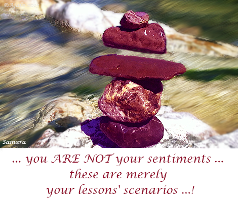 you-ARE-NOT-your-sentiments-these-are-merely-your-lessons-scenarios