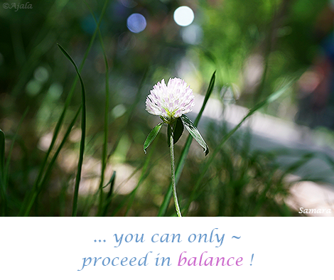 you-can-only--proceed-in-balance