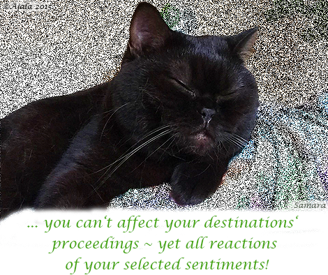 you-can-t-affect-your-destinations-proceedings--yet-all-reactions-of-your-selected-sentiments