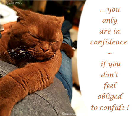 you-only-are-in-confidence--if-you-don-t-feel-obliged-to-confide