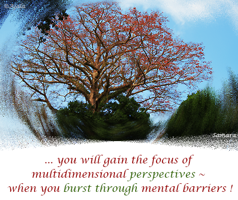 you-will-gain-the-focus-of-multidimensional-perspectives--when-you-burst through-mental-barriers