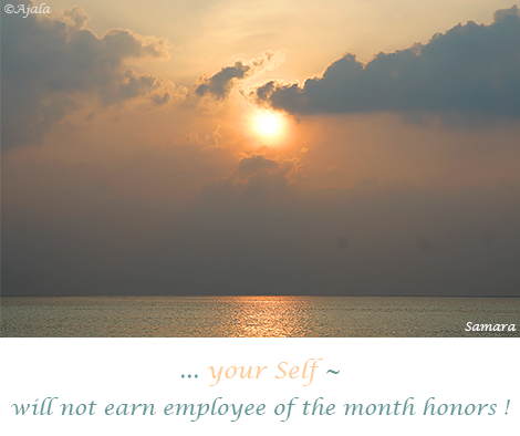 your-Self--will-not-earn-employee-of-the-month-honors