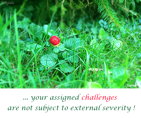 your-assigned-challenges-are-not-subject-to-external-severity