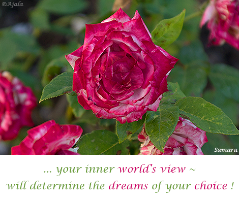 your-inner-world-s-view--will-determine-the-dreams-of-your-choice