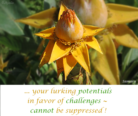 your-lurking-potentials-in-favor-of-challenges--cannot-be-suppressed
