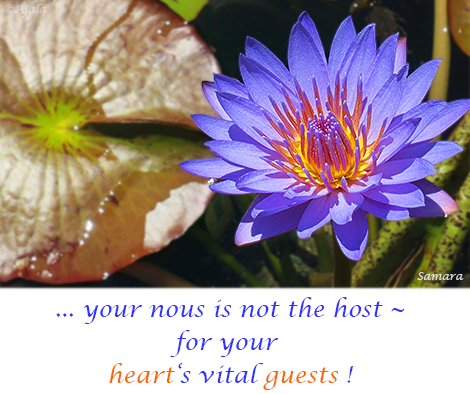 your-nous-is-not-the-host---for-your-heart-s-vital-guests