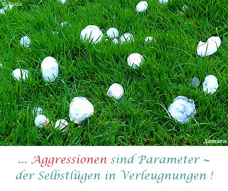 Aggressionen-sind-der-Parameter--von-Verleugnungen-der-Selbstluegen