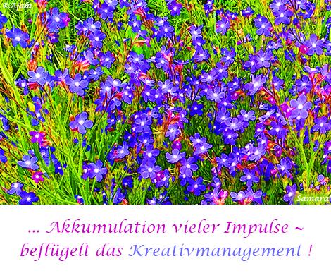 Akkumulation-vieler-Impulse--befluegelt-das-Kreativmanagement