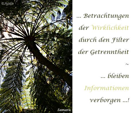Betrachtungen-der-Wirklichkeit-durch-den-Filter-der-Getrenntheit--bleiben-Informationen-verborgen