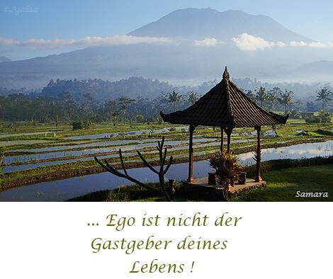 Ego-ist-nicht-der-Gastgeber-Deines-Lebens