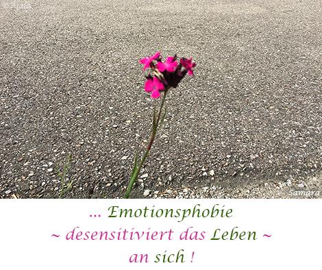 Emotionsphobie--desensitiviert-das-Leben--an-sich