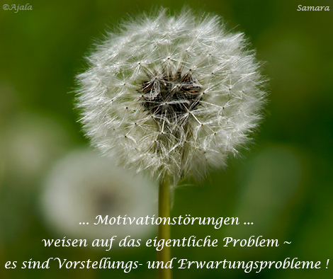 Motivationstoerungen-weisen-auf-das-eigentliche-Problem--es-sind-Vorstellungs-und-Erwartungsprobleme