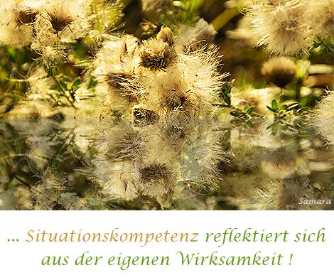 Situationskompetenz-reflektiert-sich-aus-der-eigenen-Wirksamkeit