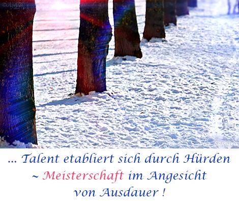 Talent-etabliert-sich-durch-Huerden--Meisterschaft-im-Angesicht-von-Ausdauer