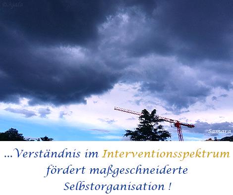 Verstaendnis-im-Interventionsspektrum-foerdert-massgeschneiderte-Selbstorganisation