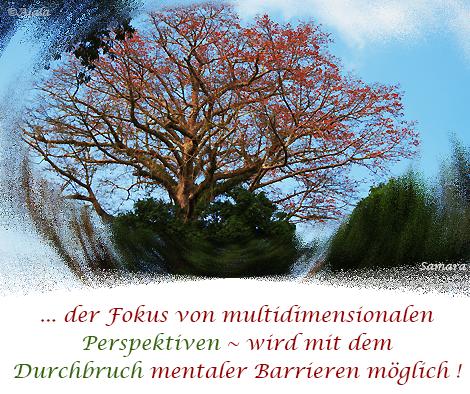 der-Fokus-von-multidimensionalen-Perspektiven--wird-mit-dem-Durchbruch-mentaler-Barrieren-moeglich