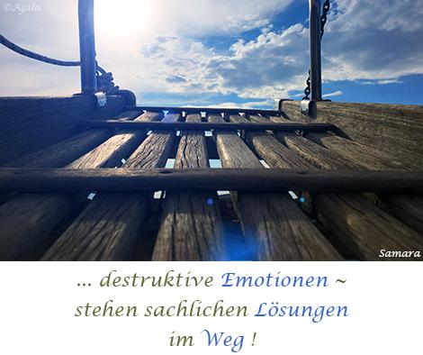 destruktive-Emotionen--stehen-sachlichen-Loesungen-im-Weg