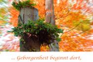 Geborgenheit-beginnt-dort-wo-du-in-DIR-zu-Hause-bist