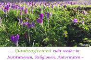 Glaubensfreiheit-ruht-weder-in-Institutionen-Religionen-Autoritaeten--ausschliesslich-im-Erkennen-der-Wahrnehmung
