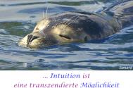 Intuition-ist-eine-transzendierte-Moeglichkeit--vieler-Ideen