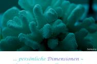 persoenliche-Dimensionen--trueben-die-universelle-Dimension