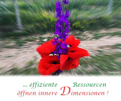 effiziente-Ressourcen-oeffnen-inndere-Dimensionen