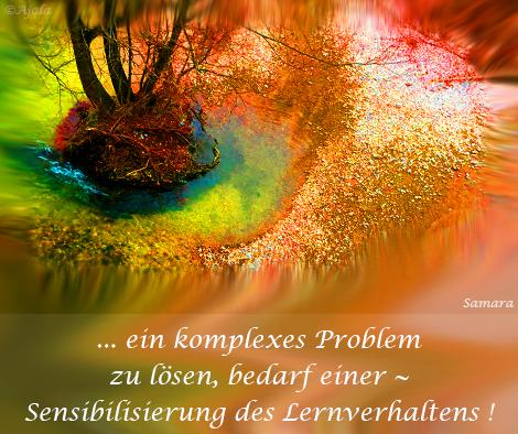 ein-komplexes-Problem-zu-loesen,-bedarf-einer--Sensibilisierung-des-Lernverhaltens