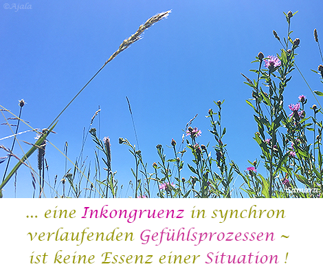 eine-Inkongruenz-in-synchron-verlaufenden-Gefuehlsprozessen--ist-keine-Essenz-einer-Situation