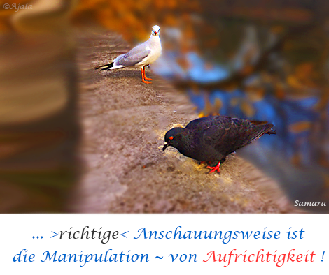 richtige-Anschauungsweise-ist-die-Manipulation-von-Aufrichtigkeit