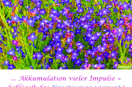 Akkumulation-vieler-Impulse--befluegelt-das-Kreativmanagement