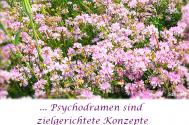 Psychodramen-sind-zielgerichtete-Konzepte-eigener-Regien