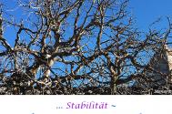 Stabilitaet--waechst-unter-stetiger-Korrektur