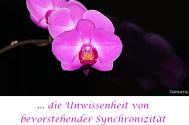 die-Unwissenheit-von-bevorstehender-Synchronizitaet-erschafft-neue-Wege