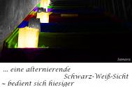 eine-alternierende-Schwarz-Weiss-Sicht--bedient-sich-hiesiger-Farbtabellen